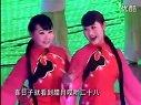 柳琴戏全集视频