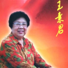 豫剧小生王素君戏曲专辑