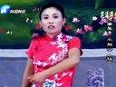 河南坠子《小刘公》全集3部胡银花