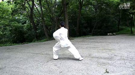 太极拳24式视频