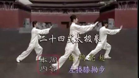 太极拳24式视频教学高清