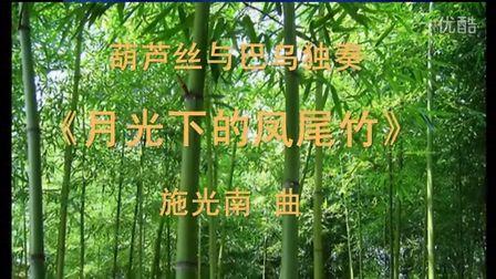 葫芦丝演奏曲集36首