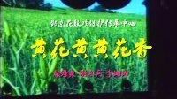 邵阳花鼓戏全集选段MP4