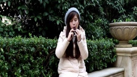 陶笛演奏的流行曲子