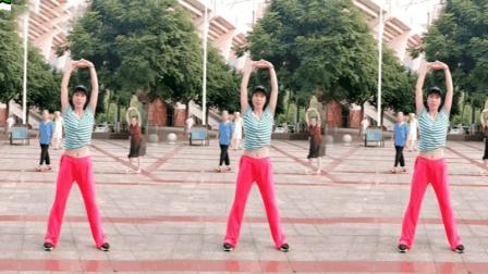 最火最好看的广场舞视频2018