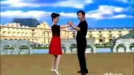 中老年交谊舞教学视频