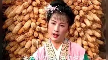 江苏徐州柳琴戏大全视频