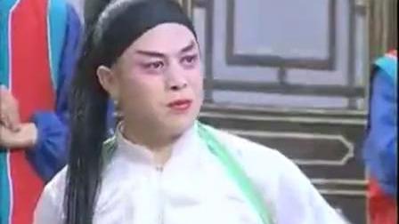 湖南花鼓戏最新全集视频