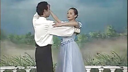 中老年交谊舞教学大全