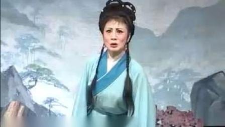 安徽庐剧大全全集视频第三部