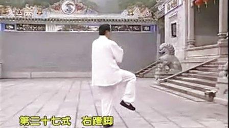 杨氏太极拳名师教学视频