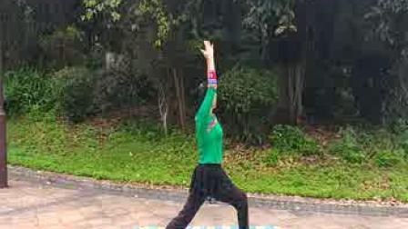 中老年瑜伽视频练习